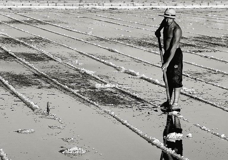 Saltpan-worker-02